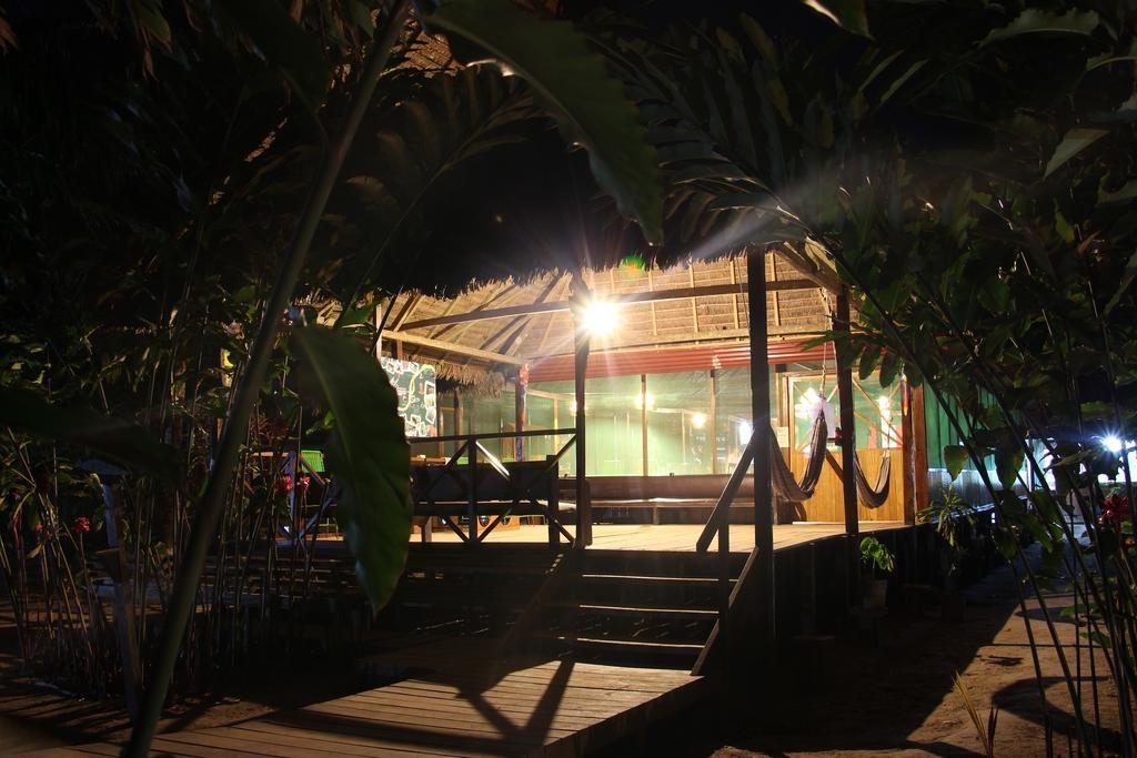 Amazon Paradise x